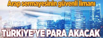 Arap sermayesi Türkiye'ye giriş yapacak