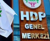 HDP'li 5 belediye başkanına terörden gözaltı