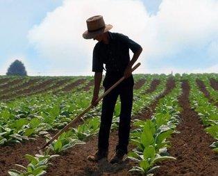 Çiftçiye ucuza tarım arazisi fırsatı