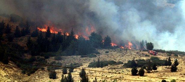 Ormanlarımızı PKK yakıyor