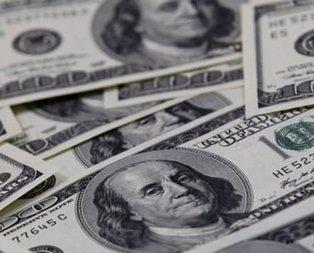 Türkiye'nin dolar hamlesinden rahatsız oldular!