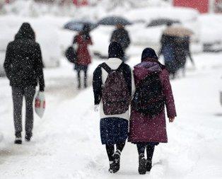 Erzurum, Kars ve Ardahan'da okullar tatil mi?