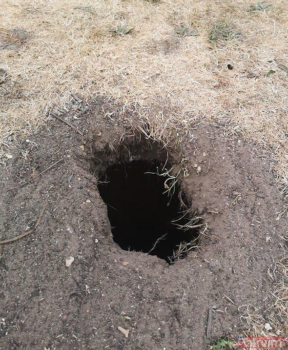 Arka bahçesinde bir delik gördü! İçini kazdıktan sonra olanlar inanılmaz...