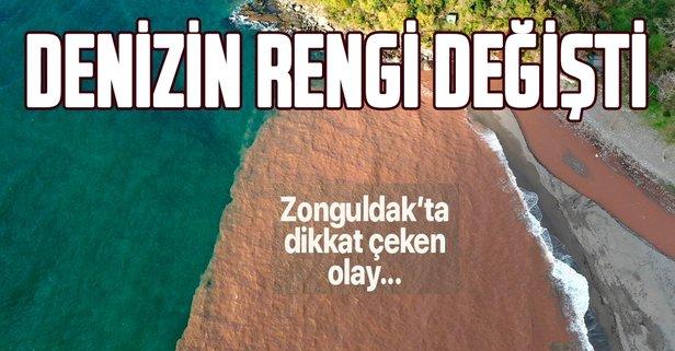 Zonguldak'ta denizin rengi değişti