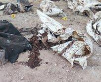 Afrin'de PKK/YPG katliamı!