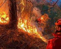 4 ilde 23 noktada yangın! Ekipler müdahale ediyor