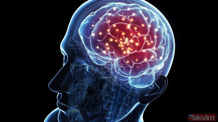 Bu besinler hafızayı güçlendiriyor, beyni geliştiriyor! İşte beyin geliştiren mucizevi besinler...