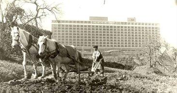 İstanbullular koronavirüs ile eski İstanbul'a dönüş yaptı! İşte İstanbul'dan nostaljik fotoğraflar!