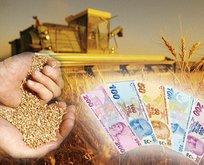 Milyonlarca çiftçiye destek ödemesi