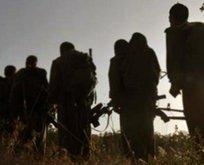 PKKnın sözde İsveç sorumlusu yakalandı