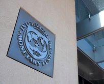 IMF'den korkutan açıklama: Bir Almanya yok olacak
