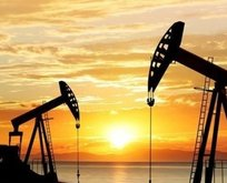 ABD'den Brent petrol açıklaması! 1 sene sonra...