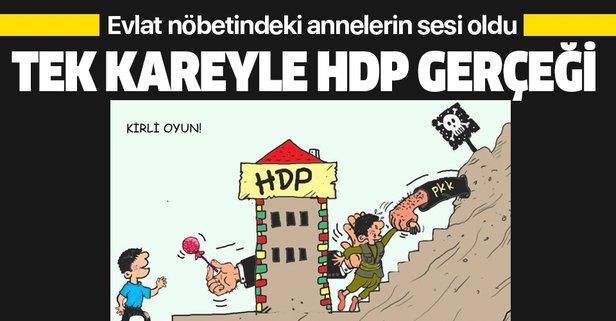 Tek kareyle HDP gerçeği!