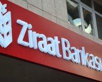 Tebrikler Vakıfbank Ziraatbank