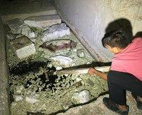 Bursa'da esrarengiz olay! Çocuklar buldu, araştırılıyor