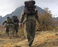 Suçüstü yakalanmışlardı! 8 PKK'lıya müebbet hapis!