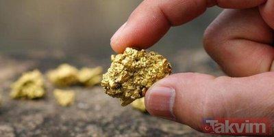 O ilimizde tonlarca altın keşfedildi! Türkiye'nin altın kaynağının en büyüğü!