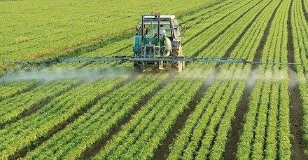 Hükümetten su ürünleri yetiştiricilerine iyi tarım desteği