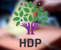 HDP'lilere Cumhurbaşkanına hakaretten soruşturma!
