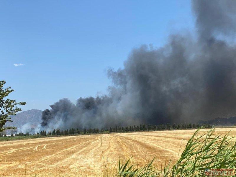 SON DAKİKA: Muğla Dalaman'da yangın! 24 saat geçmeden alevler yeniden yükseldi