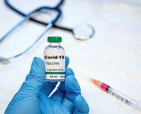 Hangi koronavirüs aşısı ne kadar?