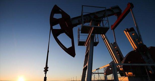 OPEC'in ham petrol üretimi yere çakıldı!
