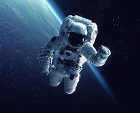 NASA duyurdu! Ay'a gidecek 18 kişilik ekibin kimlikleri belli oldu