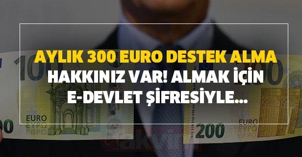 Aylık 300 Euro destek alma hakkınız var! Almak için e-devlet şifresiyle...