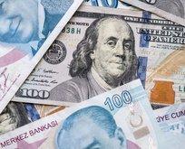 Dolar kaç TL? Euro bugün ne kadar oldu? 5 Ocak CANLI döviz kurları!