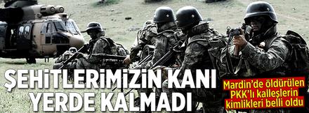 Mardin'de PKK'ya ağır darbe