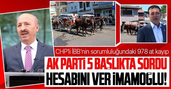 CHP'li İBB'nin sorumluluğundaki 978 at kayıp: Sonuna kadar takipçisi olacağız - Takvim