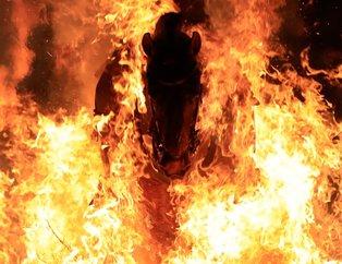 İspanya'da inanılmaz gelenek! Atlar ateş üstünde yürütüldü