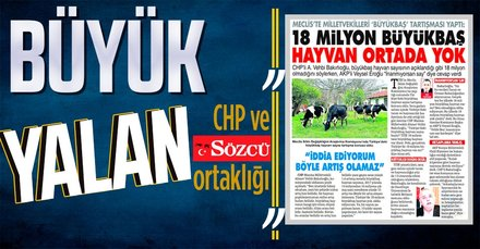 Bir CHP yalanı daha!