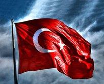 Türkler Avrupa'da en çok o ülkeden vatandaşlık aldı