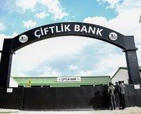 Yeni Çiftlik Banklar tespit edildi