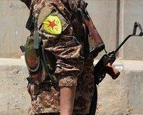 ABD PKK'yı konvansiyonel ordu gibi hazırlıyor!