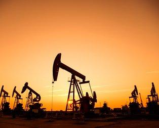 Petrol ve doğalgaz konusunda yeni hamle