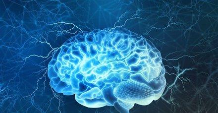 Şifa deposu o mucizevi besinler... Hem hafızayı güçlendiriyor hem de beyni geliştiriyor!