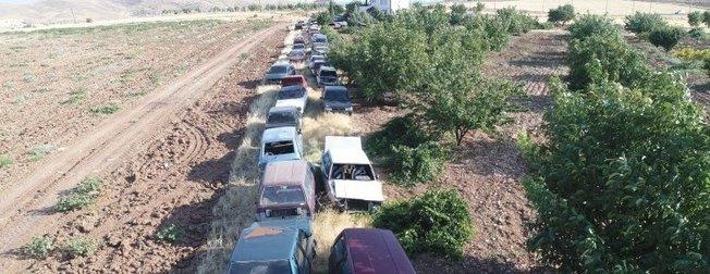 Elazığlının bahçesinde çıkan 50 otomobil görenleri şaşırtıyor!