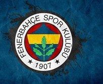 Fenerbahçe'den sermaye artırımı