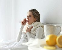 Süt-zencefil gribe birebir