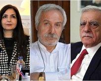 HDP'nin ortağı CHP tutuştu