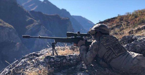 Domuz Dağı bölgesinde 4 terörist öldürüldü