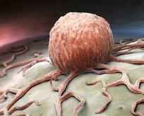 İşte kanseri tedavi eden besin! Mucizevi etkileri var..