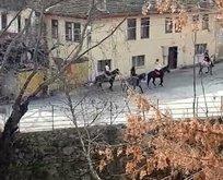 Kısıtlamaya aldırış etmeyip atla gezdiler!