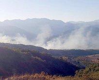 PKK'dan sivil araca bombalı saldırı!