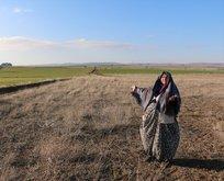 FETÖ üyeleri yaşlı kadını dolandırıp 10 milyon liralık arazilerini almış