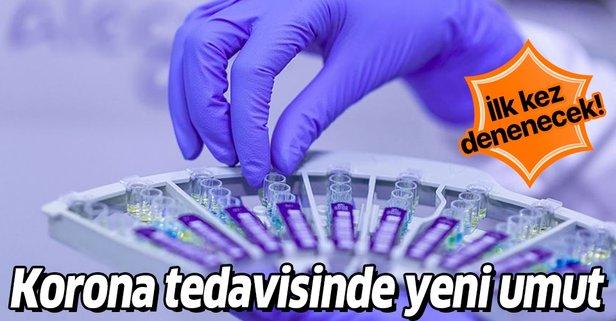 Koronavirüste yeni tedavi yöntemi