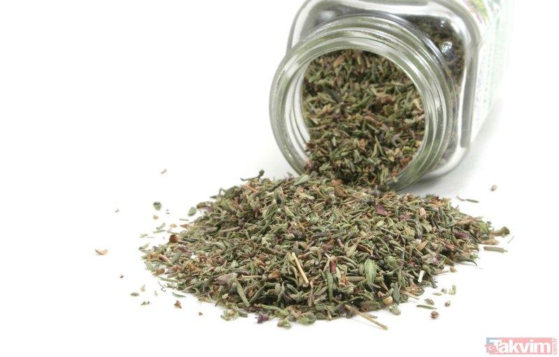 Balgam söktüren ve akciğeri temizleyen şifalı bitkiler...
