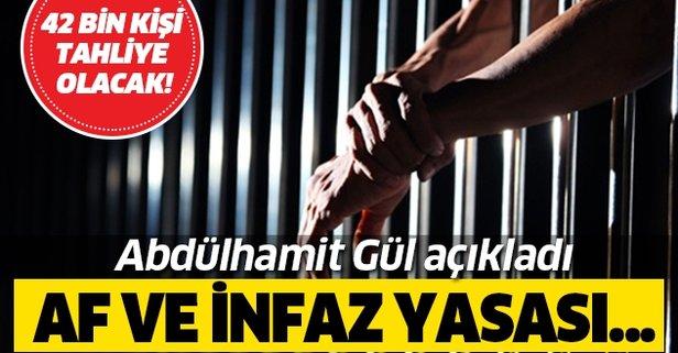 Adalet Bakanı Abdülhamit Gül açıkladı! Af ve infaz yasası...